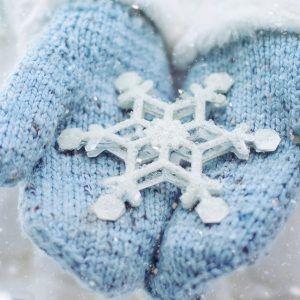 Congelados / Refrigerados