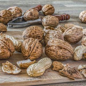 Frutos secos / Semillas